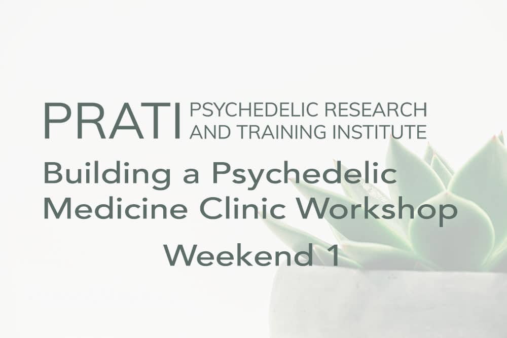 Building a Psychedelic Medicine Clinic Workshop (Weekend 1): November 14 – 15th, 2020